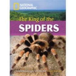 The King Of The Spiders with Multi-ROM